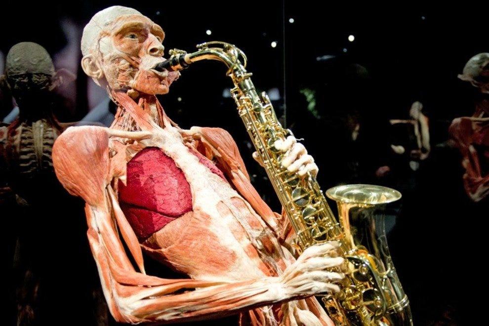 Body Worlds - музей тел